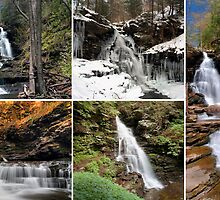 Ozone Falls In Every Season by Gene Walls