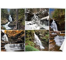 Ozone Falls In Every Season Poster