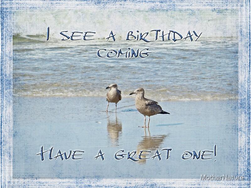 Birthday Card Sayings Beach : Quot birthday greeting card seagulls on beach