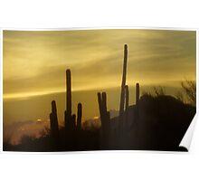 Apache Desert  Sunset  Poster