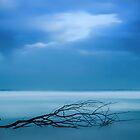 Swept Away by Jillian Merlot
