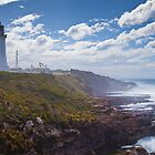 Cape Green lighthouse by John Holding