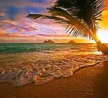 Lanikai beach at sunrise by printscapes