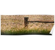 Grasslands Under Control Poster