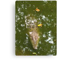 Crocodile in camouflage Canvas Print
