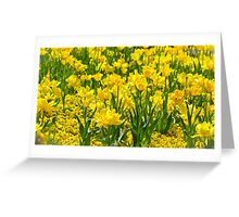 Floriade in Yellow Greeting Card
