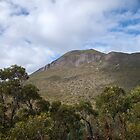stirling ranges wa by col hellmuth