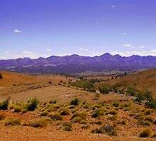 The Australian Outback by jwwallace