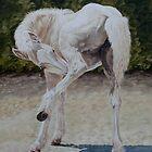 Baby Ballet by Pauline Sharp