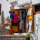 Little shop. by naranzaria