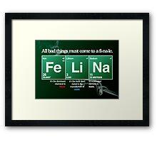 FeLiNa Poster (Breaking Bad) Framed Print
