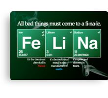 FeLiNa Poster (Breaking Bad) Canvas Print