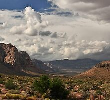 RED ROCK CANYON by George Trimmer