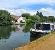 RIVERSIDE PROPERTY by ronsaunders47