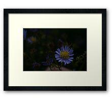 St-Andrews gardens Framed Print