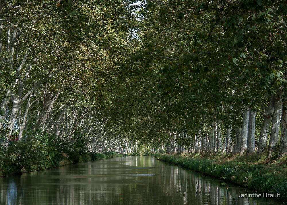Canal du Midi 2 by Jacinthe Brault
