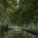 Canal du Midi 2 by Jacinthe Brault