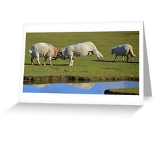Battering Rams Greeting Card