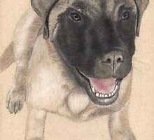 Commisioned English Mastiff Portrait by Nicole I Hamilton
