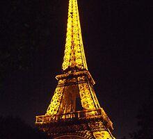 Eiffel @ Night by daniellestandel
