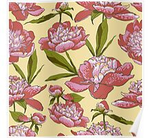 floral background with peonies  Poster