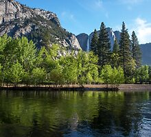Daylight Delights at Yosemite by Barbara Burkhardt