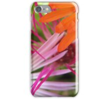 Mesembryanthemum Scribbles iPhone Case/Skin