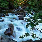 The Cascades of the Merced River by Barbara Burkhardt