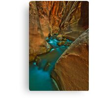 Dare To Explore Canvas Print