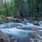 Merced River on the Run - Yosemite by Barbara Burkhardt