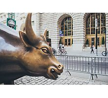 The Charging Bull Photographic Print