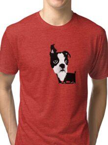 Boston T Tri-blend T-Shirt