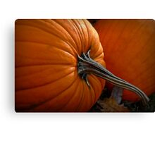A Pumpkin For Thoreauing Canvas Print