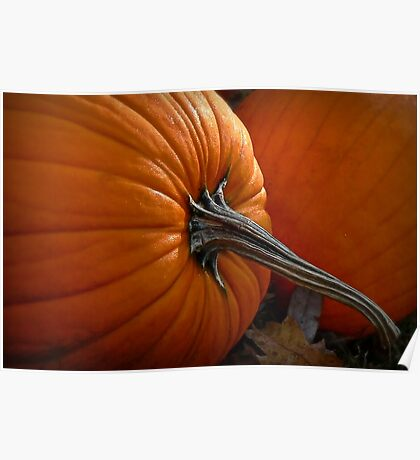 A Pumpkin For Thoreauing Poster
