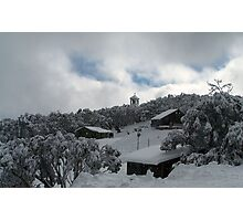 Winter white... Photographic Print