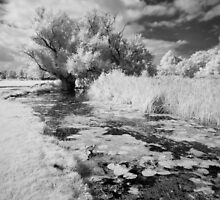 River Brett by Christopher Cullen