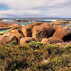 Elephant Cove. WA. by John Sharp