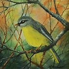 Eastern Yellow Robin By Maureen Warhust  by TwoBaysArtGroup