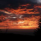 Sunset by AhaC