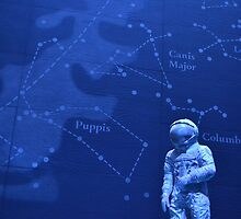 Spaceman - Natural History Museum by Jessica Reilly