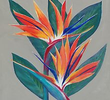 Bird of Paradise by Coralie Newman by TwoBaysArtGroup