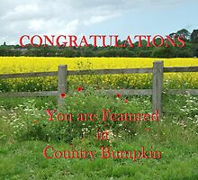 Banner - Country Bumpkin by AnnDixon