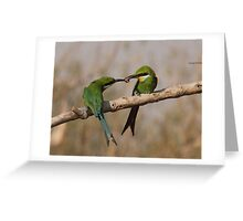 Courtship feed Greeting Card