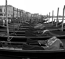 Gondolas Of Venice by Adrian Alford Photography