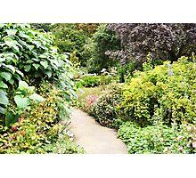 English Garden Path Photographic Print