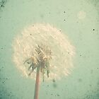 Dandelion Clock by Cassia