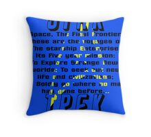 Space! The Final Frontier Throw Pillow