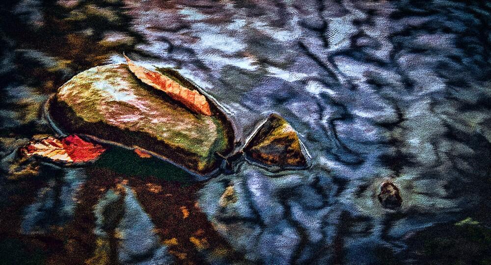 Stone Leaves by Wib Dawson