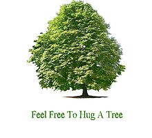 Feel Free to Hug a Tree by Martin Rosenberger