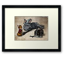 The Hobbit Bunnies Framed Print